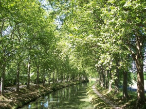 The Canal du Midi in Toulouse